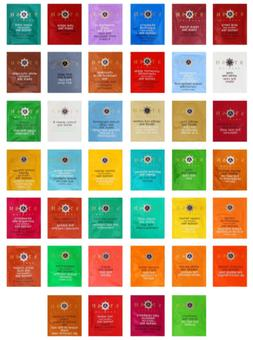 Stash Tea Bags Assortment Includes Mints by Variety Fun